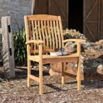 Waverly Teak Arm Chair – Set of 2